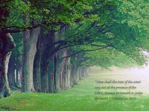 1 Chronicles 16:33 – Faith Trees Wallpaper