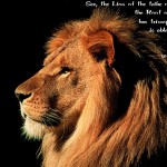 Revelation 5:5 – Lion of Tribe Judah Wallpaper Christian Background