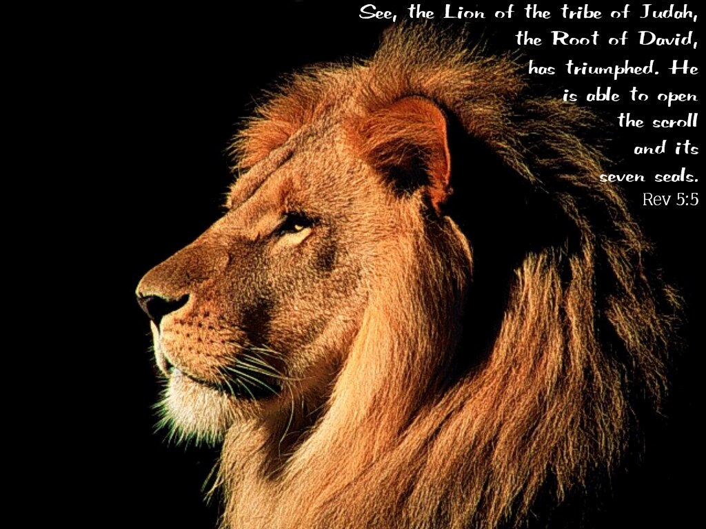 Revelation 5:5 – Lion of Tribe Judah christian wallpaper free download. Use on PC, Mac, Android, iPhone or any device you like.
