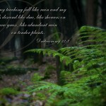 Deuteronomy 32:2 – Mighty God Wallpaper Christian Background