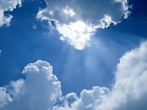 Praise is Like Sunlight Wallpaper