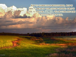 Hosea 10:12 – It Is Time To Seek The Lord Wallpaper