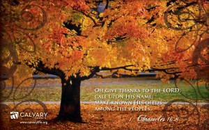 1 Chronicles 16:8 – Give Thanks Wallpaper