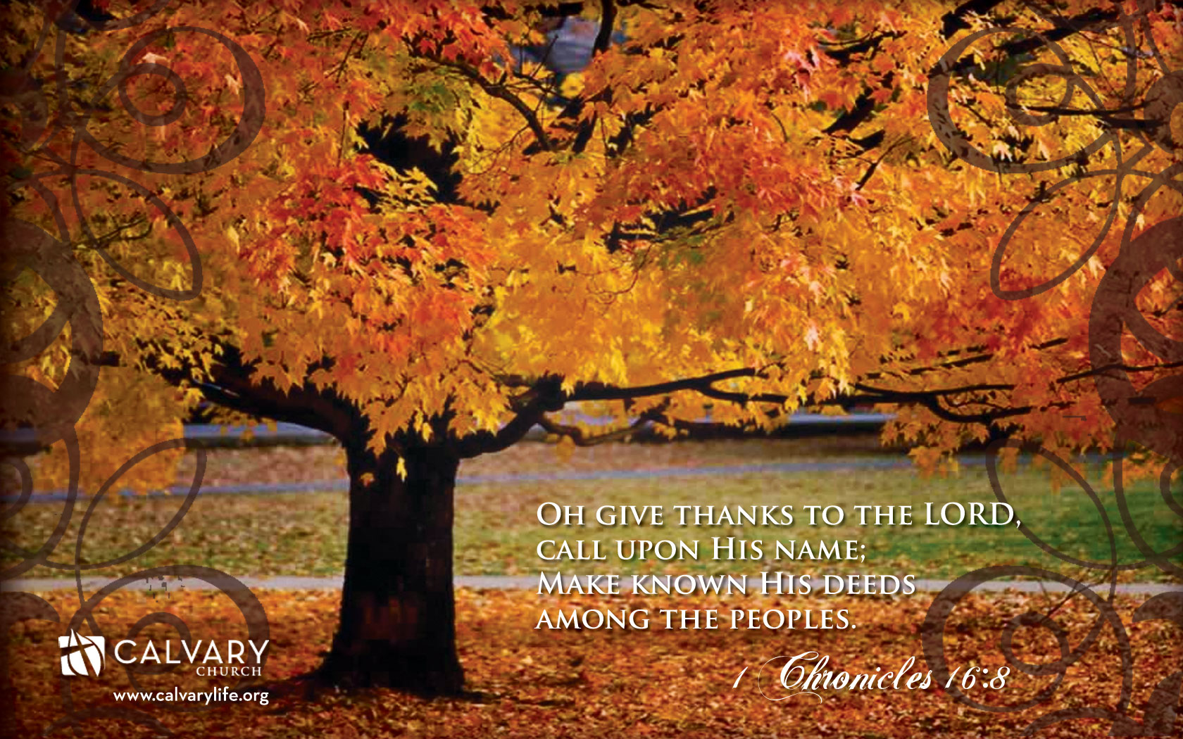 1 Chronicles 168 Give Thanks Wallpaper Christian Wallpapers And