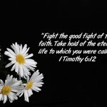 1 Timothy 6:12 – Eternal Life Wallpaper Christian Background