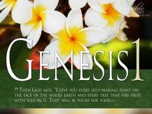 Genesis 1:29 – God is Our Provider Wallpaper