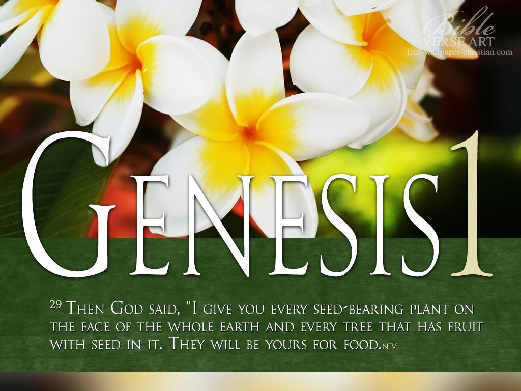genesis versiculo: