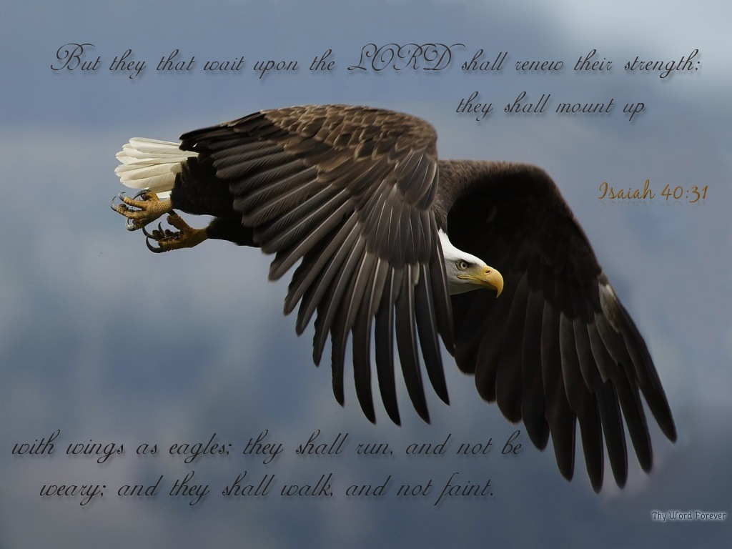 Isaiah 40:31 – Like Eagles christian wallpaper free download. Use on PC, Mac, Android, iPhone or any device you like.