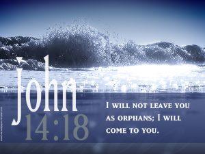 John 14:18 – Will Not Leave Wallpaper