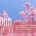 John 8:31 – Jesus' Disciples Wallpaper Christian Background