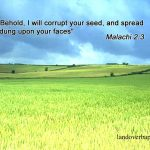 Malachi 2:3 – Because of You Wallpaper Christian Background