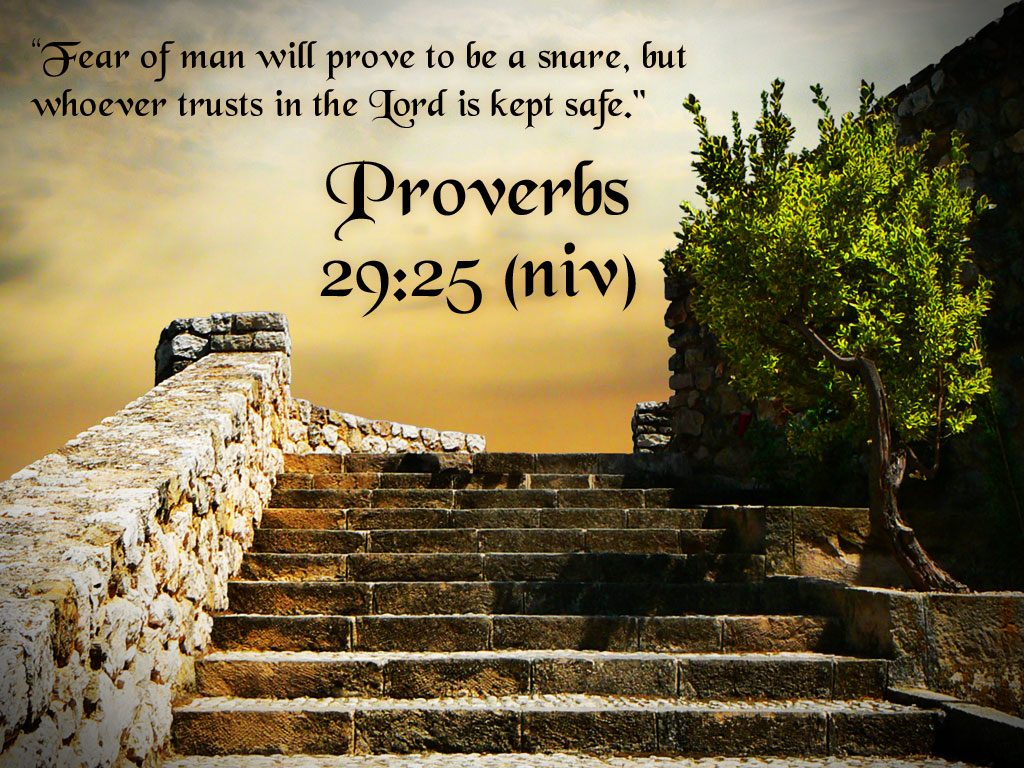 Proverbs 29:25 – Fear of Man christian wallpaper free download. Use on PC, Mac, Android, iPhone or any device you like.
