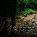 Proverbs 3:5-6 – Trust in the Lord Wallpaper Christian Background