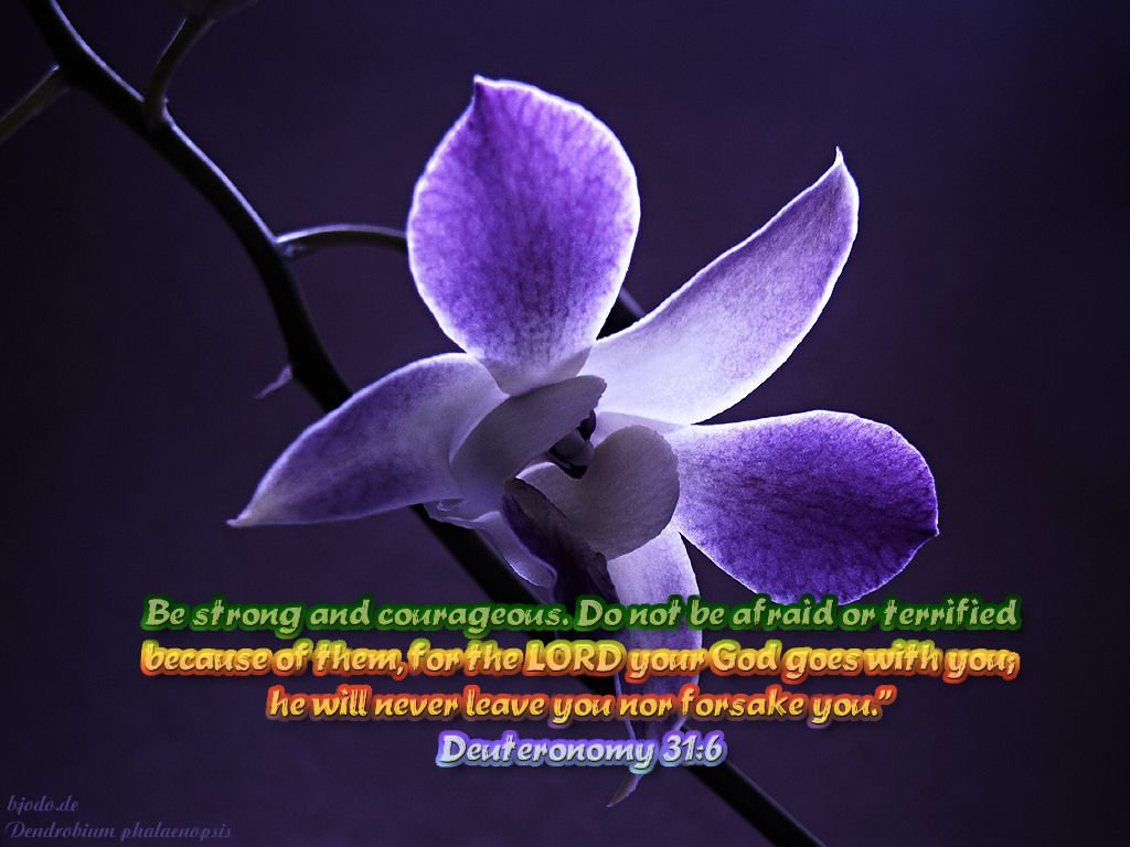 Deuteronomy 31:6 – He Will Never Leave You christian wallpaper free download. Use on PC, Mac, Android, iPhone or any device you like.