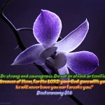 Deuteronomy 31:6 – He Will Never Leave You Wallpaper Christian Background