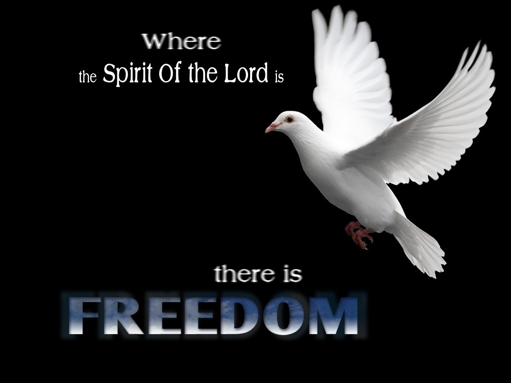 Christian Quote: Freedom christian wallpaper free download. Use on PC, Mac, Android, iPhone or any device you like.