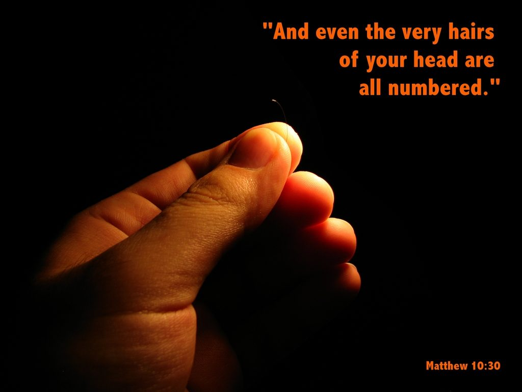 Matthew 10:30 – All Are Numbered christian wallpaper free download. Use on PC, Mac, Android, iPhone or any device you like.