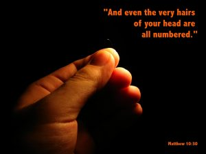 Matthew 10:30 – All Are Numbered Wallpaper
