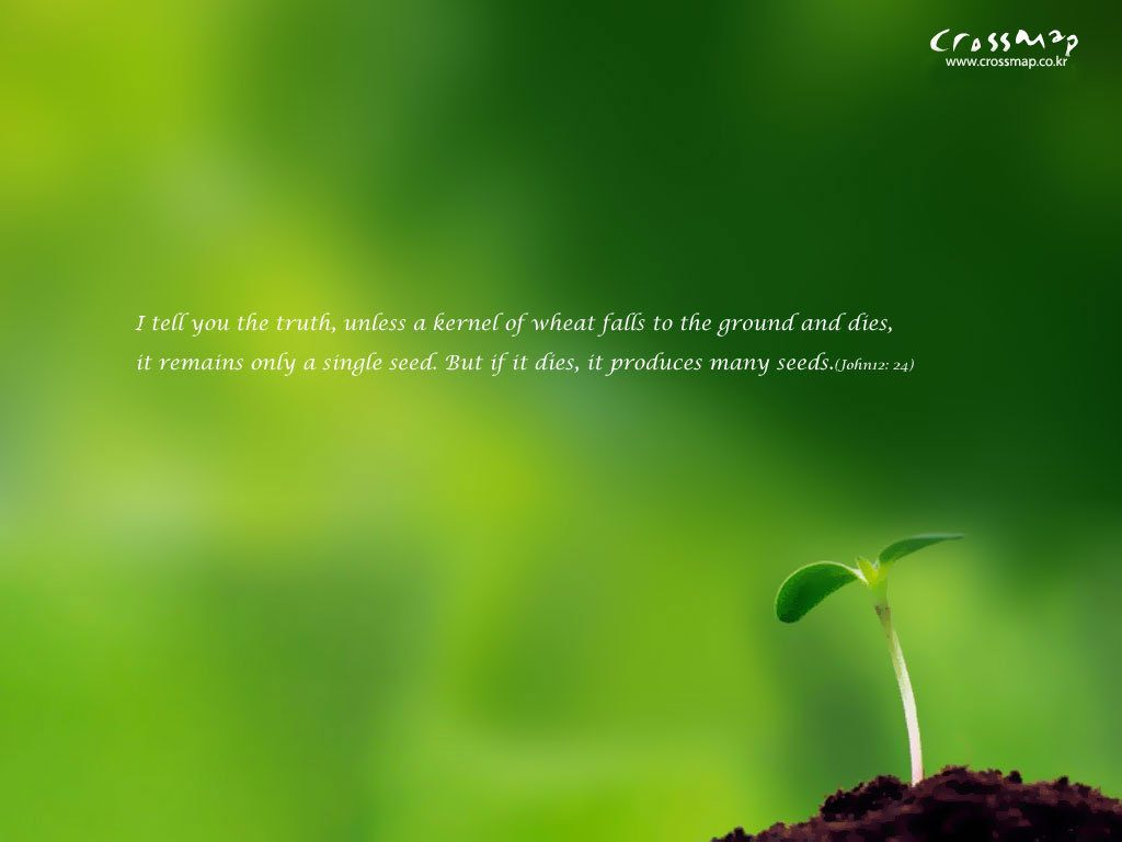 John 12:24 – Seeds christian wallpaper free download. Use on PC, Mac, Android, iPhone or any device you like.