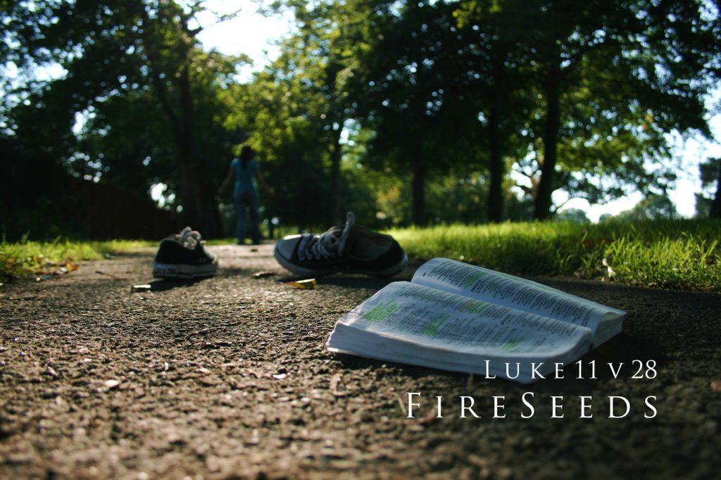 Luke 11:12 – Fireseeds christian wallpaper free download. Use on PC, Mac, Android, iPhone or any device you like.