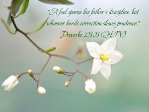Proverbs 15:5 – Discipline Wallpaper