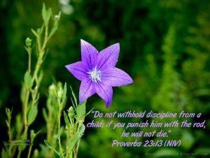 Proverbs 23:13 – Discipline Wallpaper