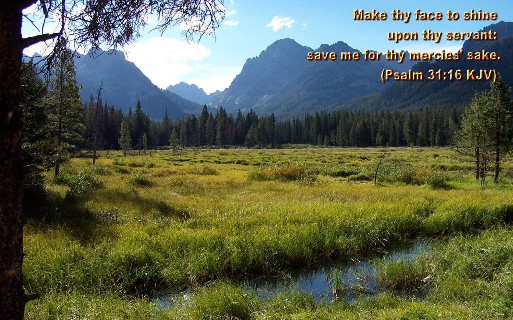 Psalm 31:16 – Mercy christian wallpaper free download. Use on PC, Mac, Android, iPhone or any device you like.