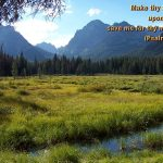 Psalm 31:16 – Mercy Wallpaper Christian Background