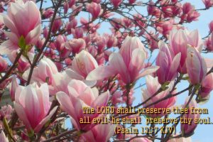 Psalm 121:7 – The Lord Watch Over You Wallpaper