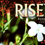 Romans 4:25 – Raised To Life Wallpaper Christian Background