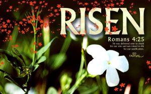 Romans 4:25 – Raised To Life Wallpaper