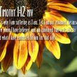 2 Timothy 1:12 – Whom I Have Believed Wallpaper Christian Background