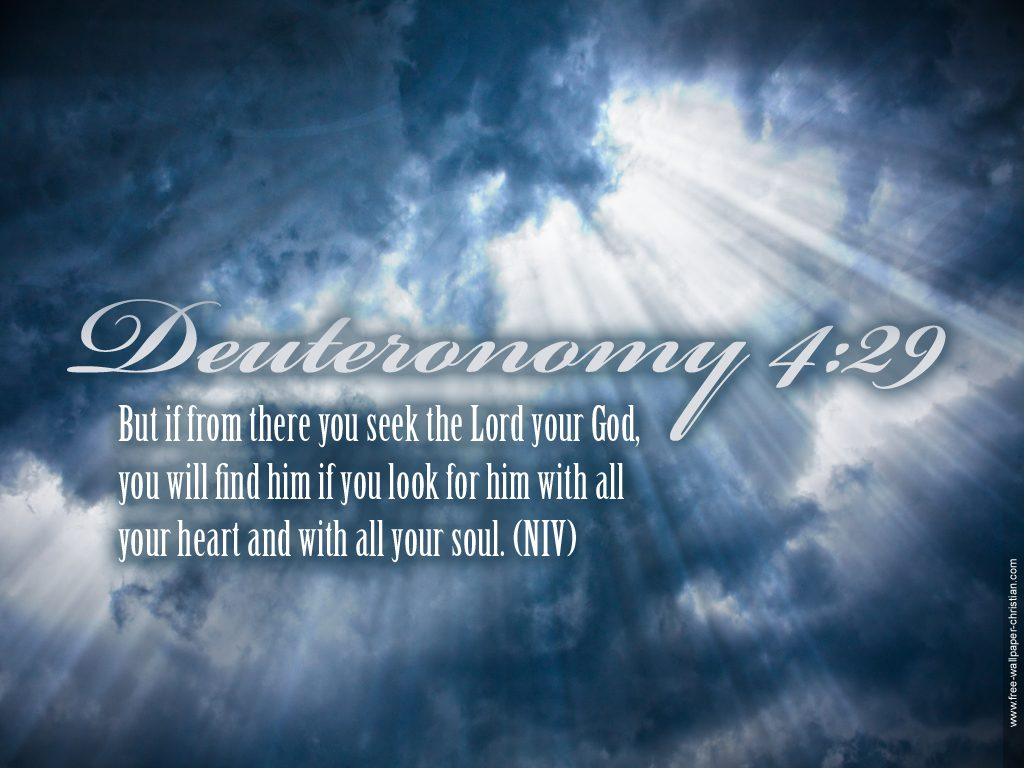 Deuteronomy 4:29 – Seeking the Lord christian wallpaper free download. Use on PC, Mac, Android, iPhone or any device you like.