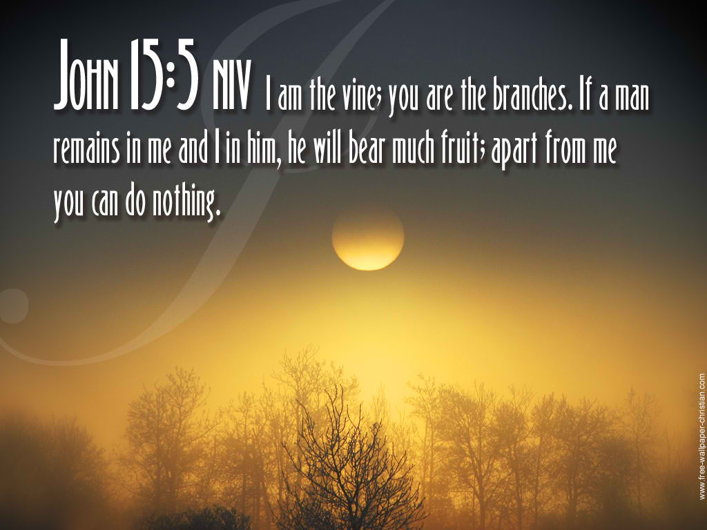 John 15:5 – The Vine christian wallpaper free download. Use on PC, Mac, Android, iPhone or any device you like.