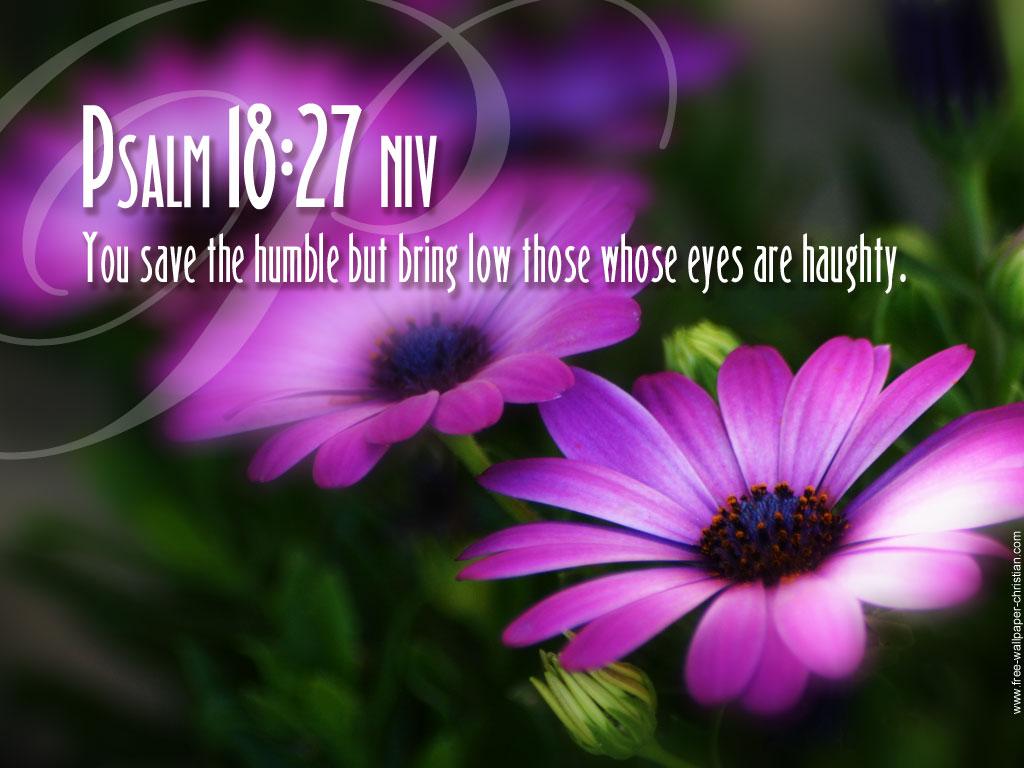 Top   Wallpaper Horse Bible Verse - Psalm-18-27  Photograph_494645.jpg