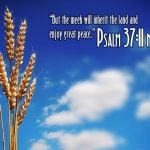 Psalm 37:11 – Great Peace Wallpaper Christian Background