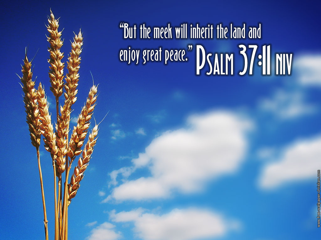 Psalm 37:11 – Great Peace christian wallpaper free download. Use on PC, Mac, Android, iPhone or any device you like.