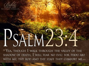Psalm 23:4 – I Will Fear No Evil Wallpaper