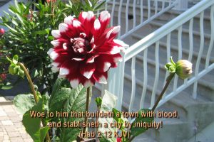 Habakkuk 2:12 – Town With Blood Wallpaper