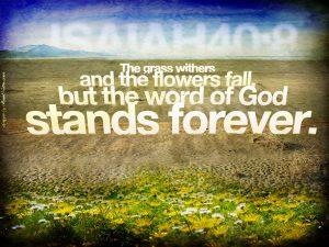 Isaiah 40:8 – Word of God Wallpaper