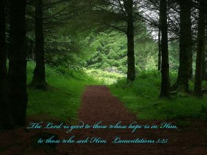 Lamentations 3:25 – God is Good Wallpaper