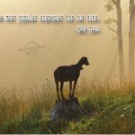Mark Twain – Scapegoat Wallpaper Christian Background