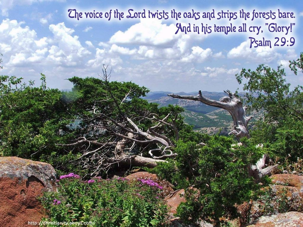 Psalm 29:9 – The Voice Of The LORD christian wallpaper free download. Use on PC, Mac, Android, iPhone or any device you like.