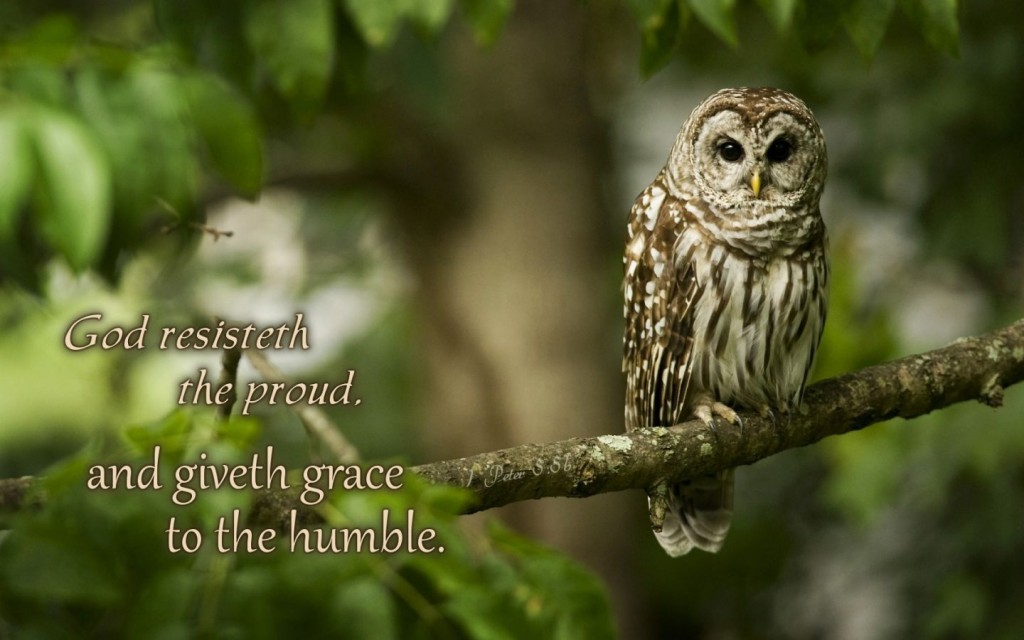 1 Peter 5:5 – God Give Grace To The Humble christian wallpaper free download. Use on PC, Mac, Android, iPhone or any device you like.