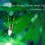 1 Corinthians 13:7-8 – Love Never fails Wallpaper Christian Background
