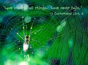 1 Corinthians 13:7-8 – Love Never fails Wallpaper