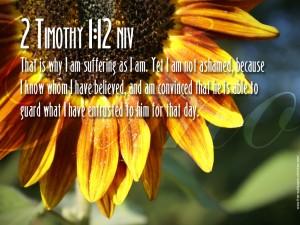 2 Timothy 1:12 – No Cause of Shame Wallpaper