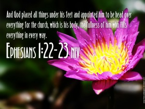 Ephesian 1:22-23 – The Head Over Everything Wallpaper