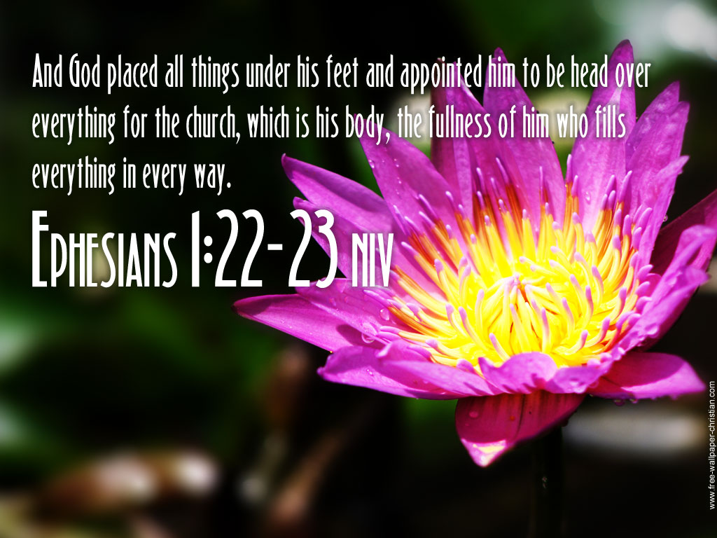 Ephesian 1:22-23 – The Head Over Everything christian wallpaper free download. Use on PC, Mac, Android, iPhone or any device you like.