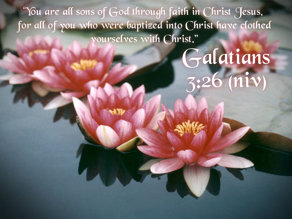 Galatians 3:26-27 – Children of God christian wallpaper free download. Use on PC, Mac, Android, iPhone or any device you like.